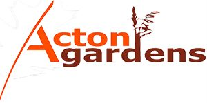 Acton-Logo-Trans